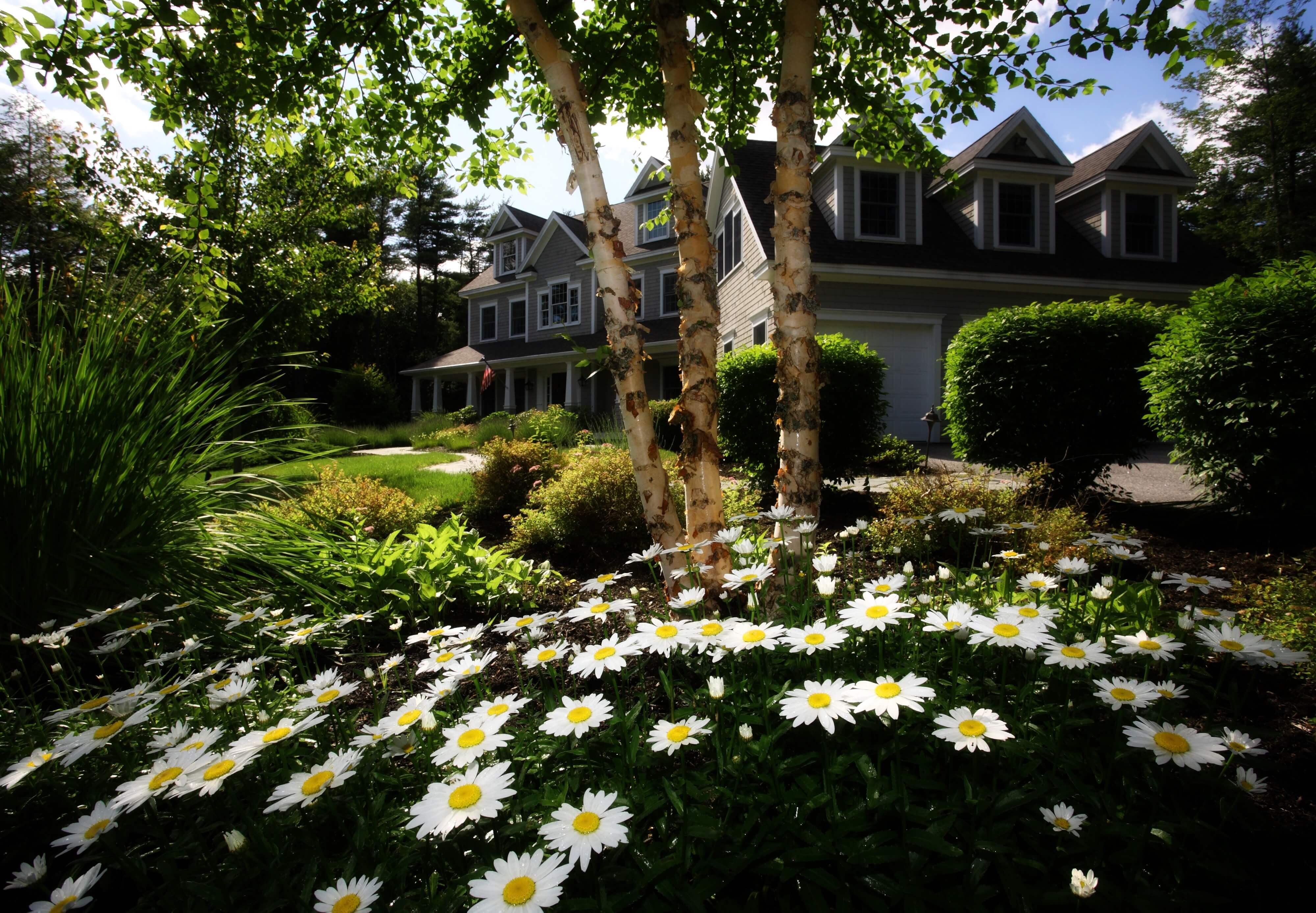trädgårdsdesign för din trädgård